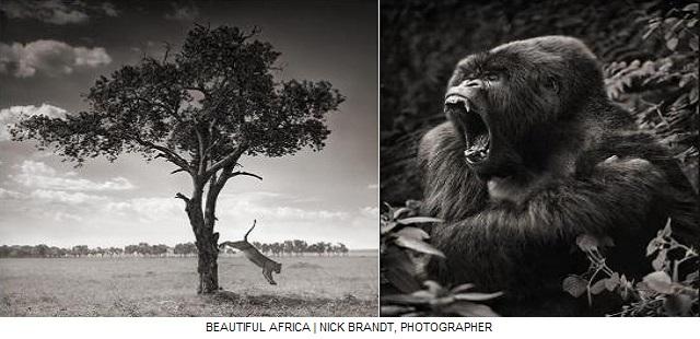 Beautiful Africa - (photos) - Dugutigui